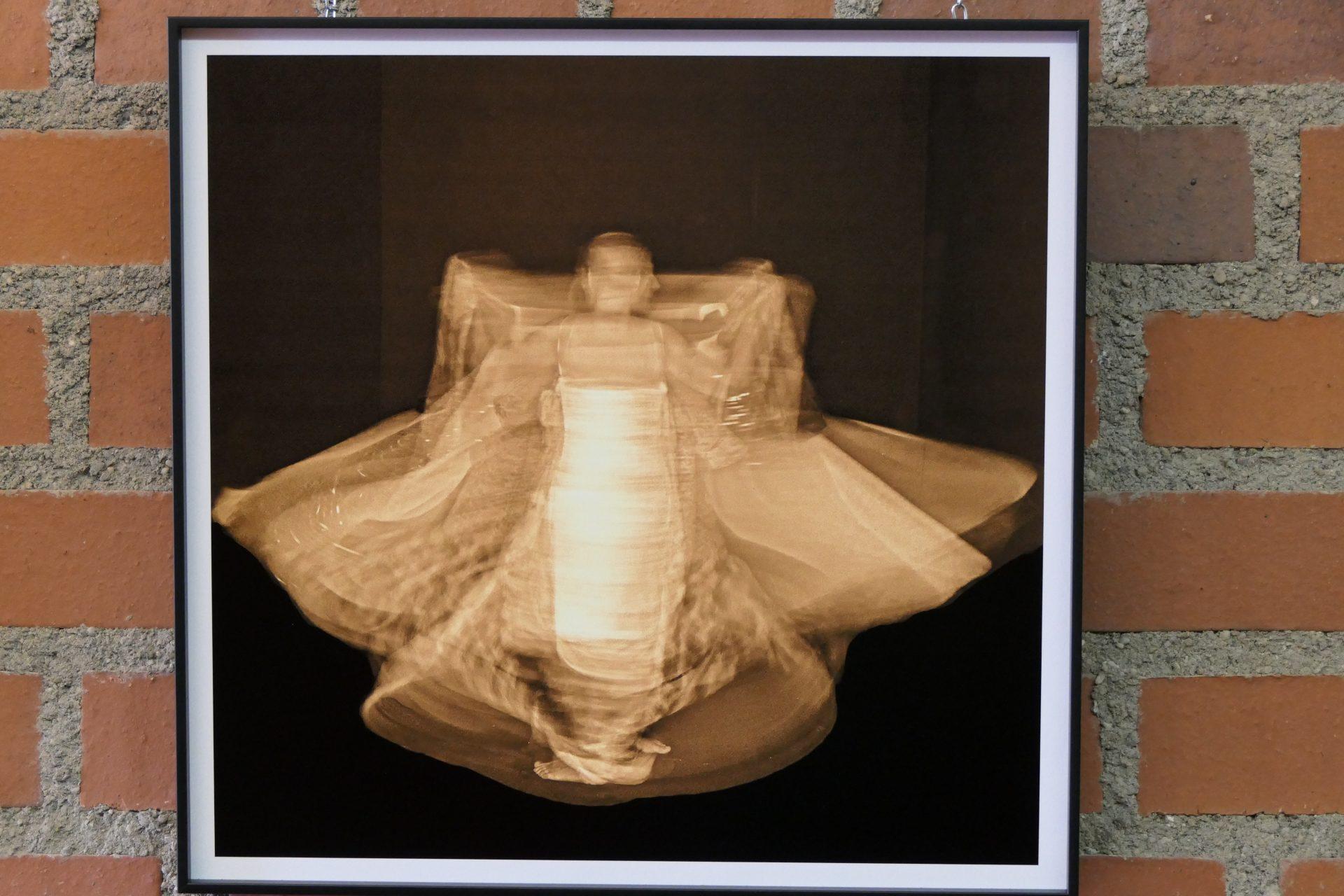 Moth ready for wedding von Martina Singer, Fotografie aud Kapafix aufgezogen
